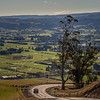 View of the Taieri Plains from Scroggs Hill