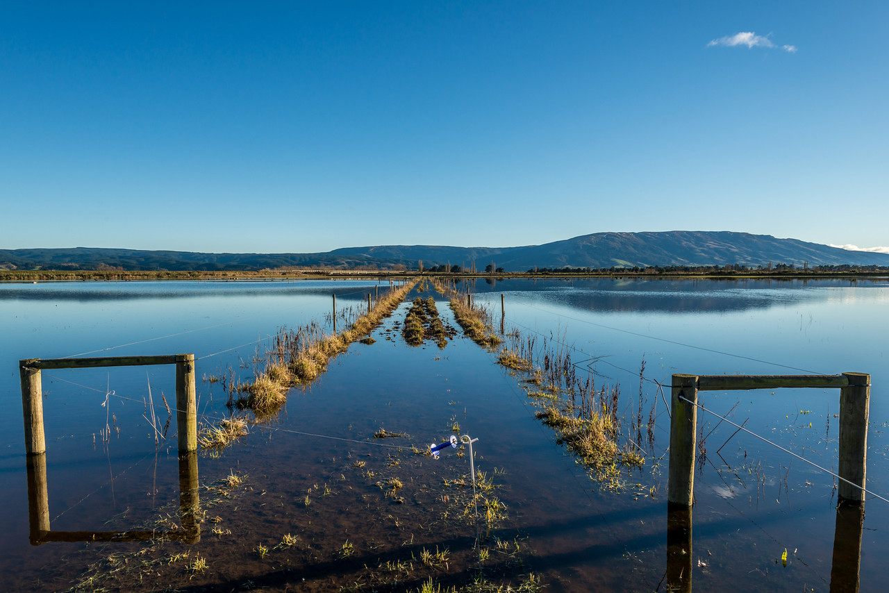 Flooded paddocks in the Taieri Plains