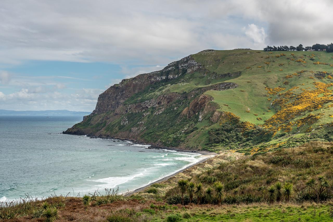 Boulder Beach, Otago Peninsula.