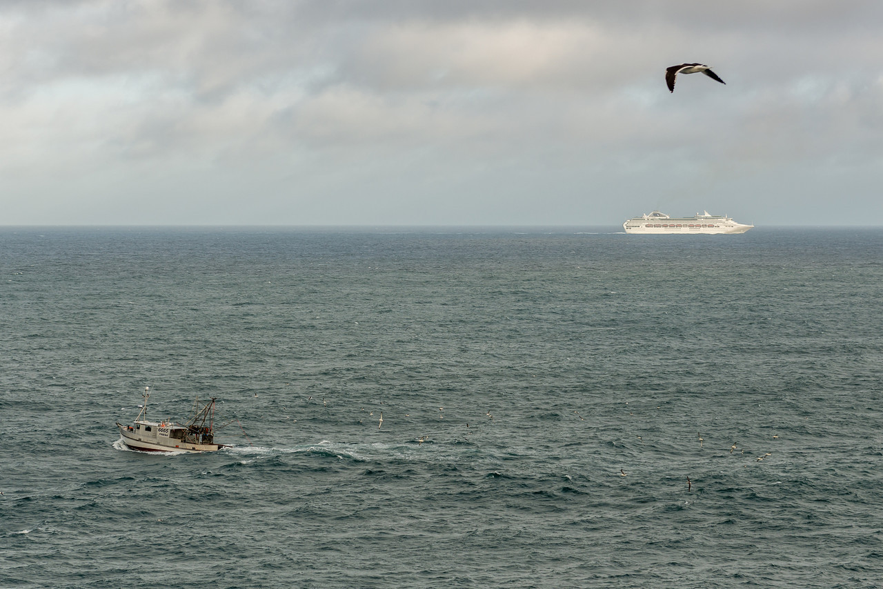 "Cruise ship ""Dawn Princess"" and fishing vessel ""Triena"" off the coast at Cape Saunders"