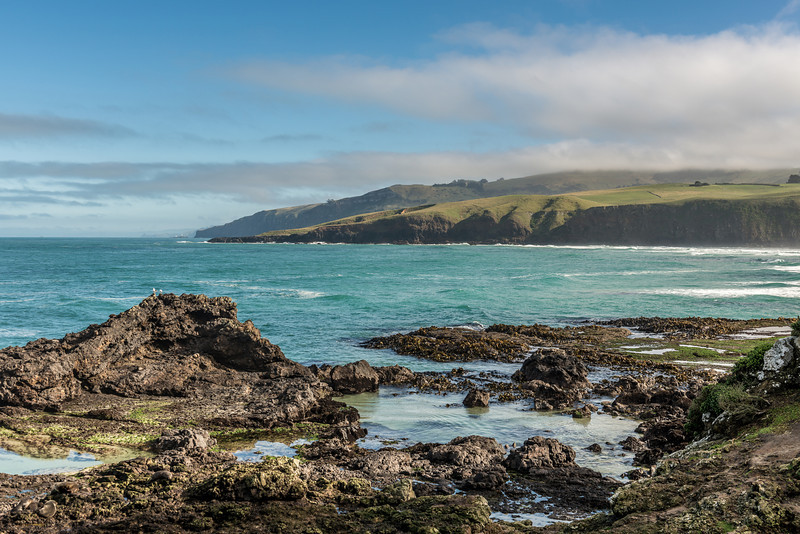 At the eastern end of Sandfly Bay. Seal Point back left