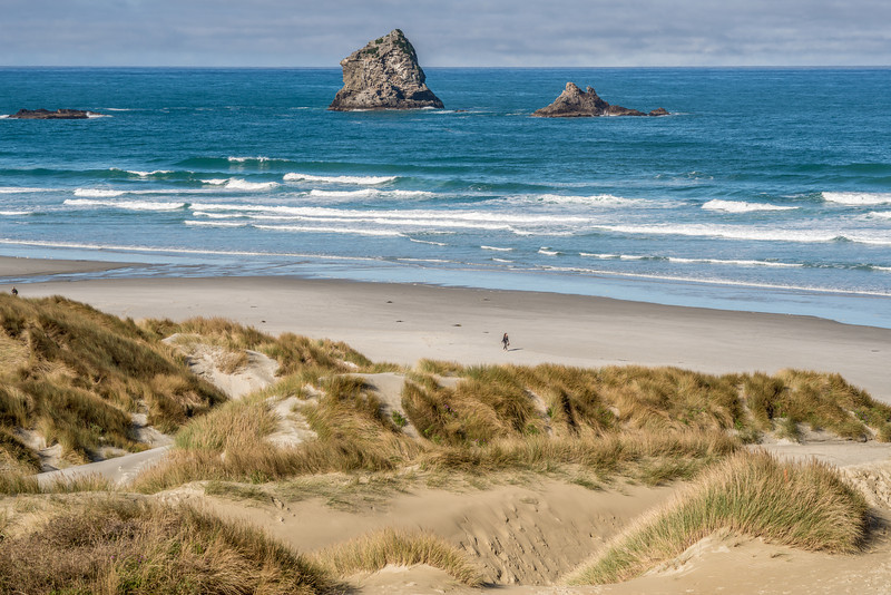 View of Sandfly Bay and the Gull Rocks from the top of the sand dune