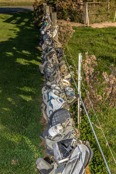 Lake Waihola shoe fence
