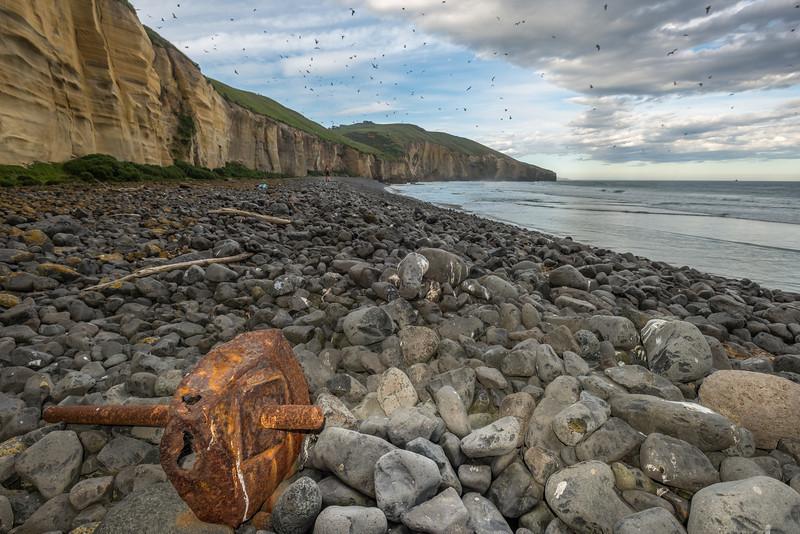 On the coastline just east of Black Head