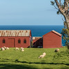 Matanaka farm buildings, Waikouaiti: store room and schoolhouse