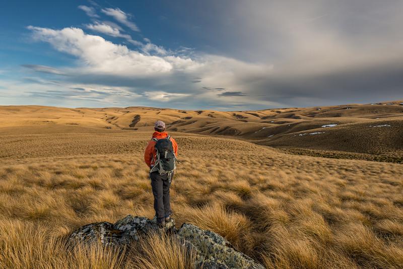 On the Lammermoor Range tops