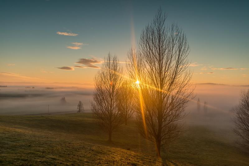 Sunrise over fog, Berwick