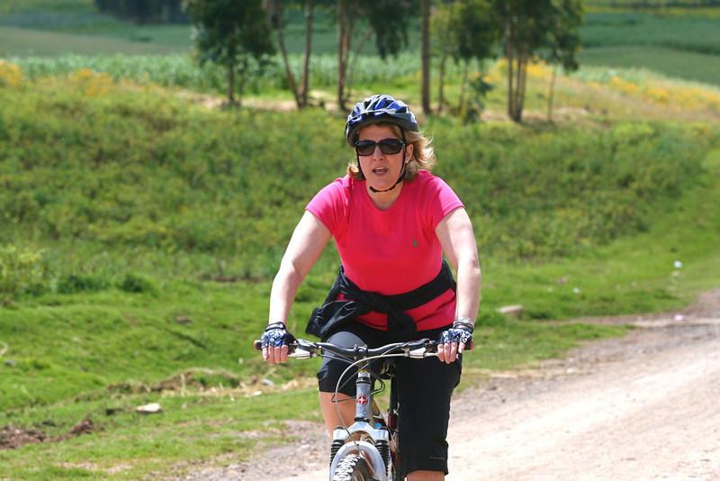SEI Bike (38)