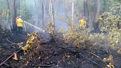 06-25-2016 Town Forest Brush Fire
