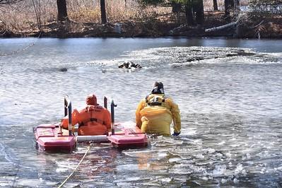 03-08-2017 Holiday Lane Dog Rescue