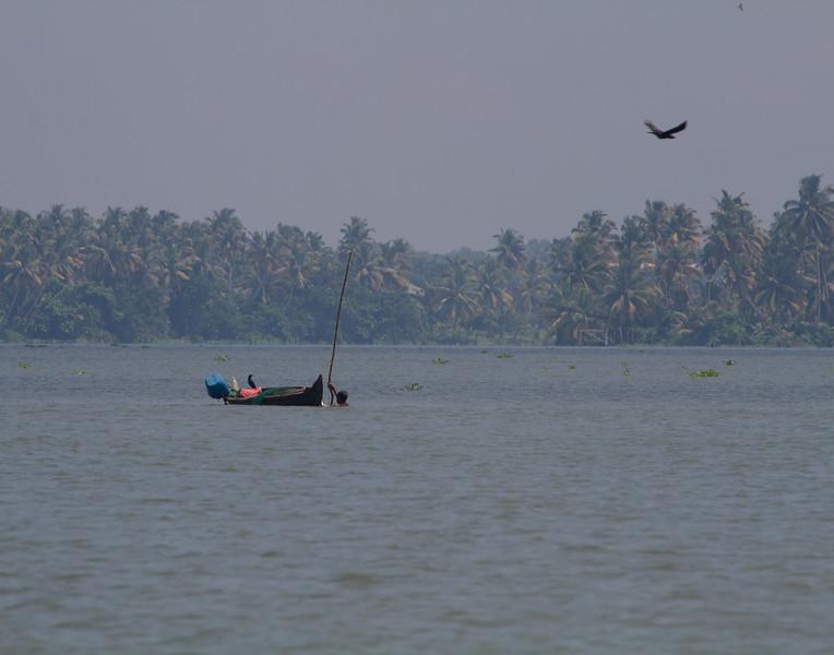 Jumped In. Kerala, India.