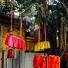 Chhinnamastika Devi Temple, Chintpurni, Kangra Valley, Himachal Pradesh