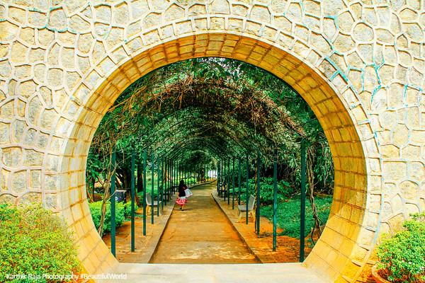 Lalbagh Botanical Gardens, Bangalore, Karnataka