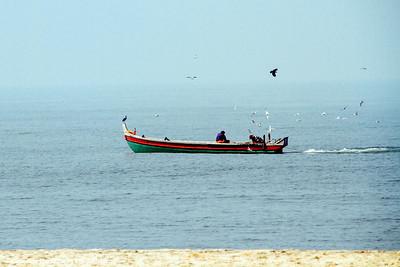 Fisherman with circling birds, Alappuzha, Kerala