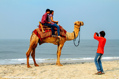 Camel ride, Photographer, Alappuzha beach, Alappuzha, Kerala