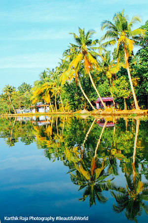 Backwaters, Kumarakom, Kerala