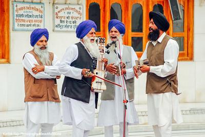 Musicians, Golden Temple, Anritsar, Punjab, India