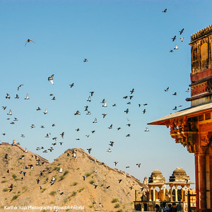 Amer Fort, Amber Palace, Jaipur, Rajasthan, Incredible India