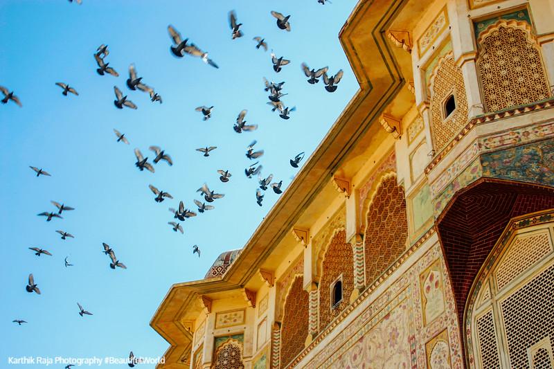 Sheesh Mahal, Amer Fort, Amber Palace, Jaipur, Rajasthan, Incredible India