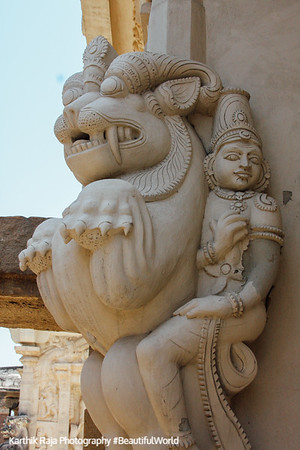Sculptures at the temple - Yallis, Kailasnatha temple, Kanchipuram, India