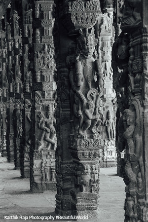 Hall of 100 pillars - Varadaraja Perumal Temple, Kanchipuram, India