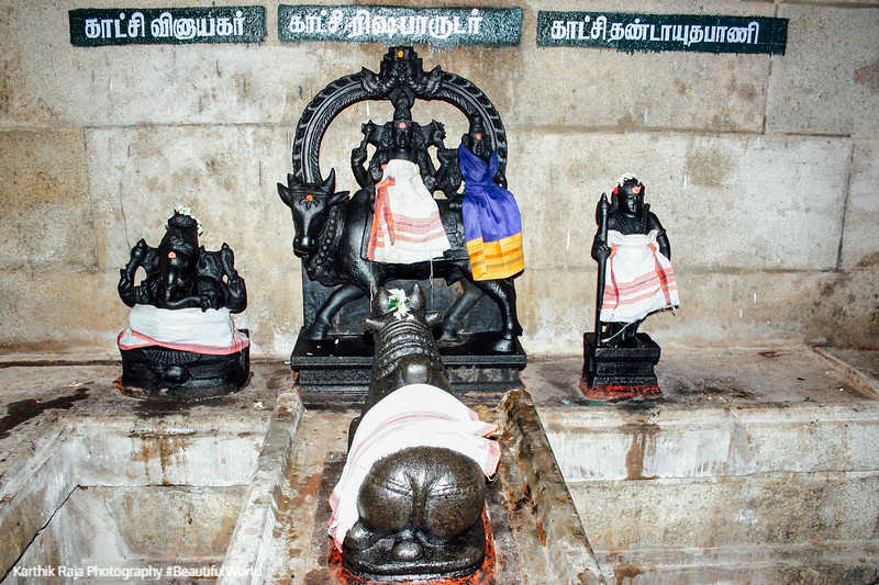 Sivan as Rishabaradunar, Sivan Temple, Karaikudi, India