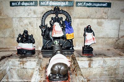 Sivan as Rishabaradunar, Sivan Temple, Karaikudi, India