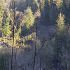 this is from the ridge behind the store looking at another slide which is to the south of the main one.  This slide would come to the base of the slope at sunset Falls