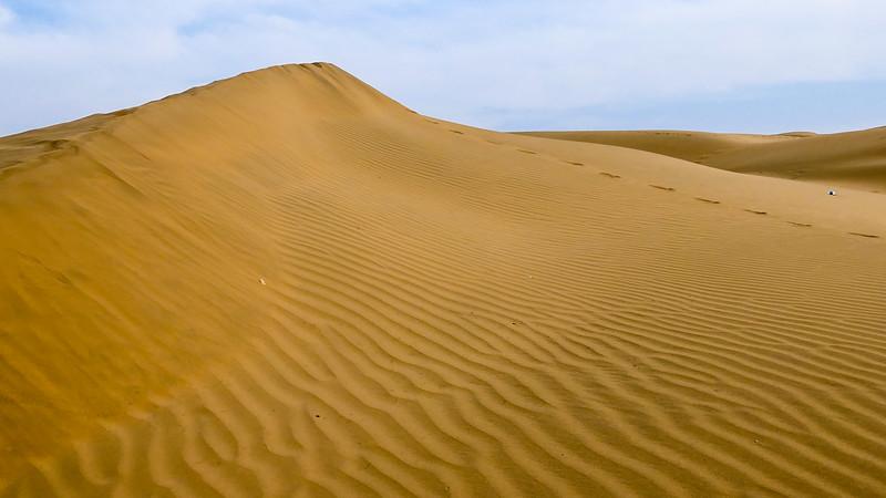 The sands of the Thar Desert just outside Jaisalmer.
