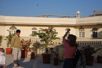 363 - Jaipur, Alsisar Haveli hotel