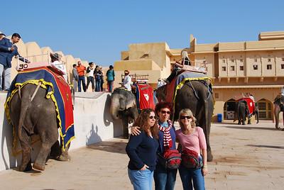 391 - Jaipur, Amber Fort