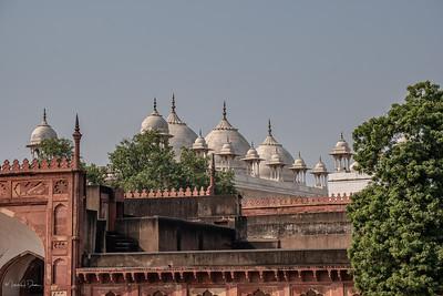 India-1563
