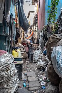 India-3101