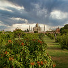 Taj Mahal from Mahtab Bagh