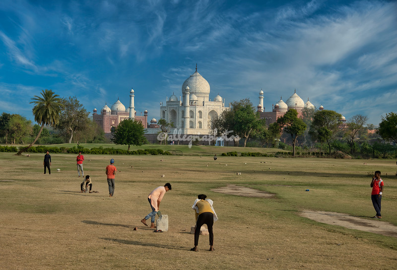Cricket in the foreground of the Taj Mahal