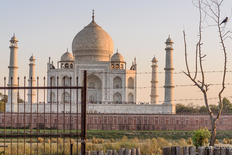 Taj Mahal Behind Wire