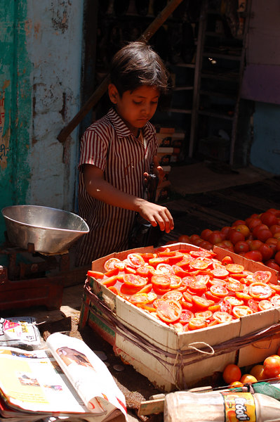 Sorting sliced tomatoes at the market