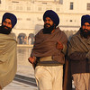 "Three wise men frolicking about the grounds of the Harmandir Sahib (Golden Temple) - Amritsar, India.  This is a travel photo from Amritsar, India. <a href=""http://nomadicsamuel.com"">http://nomadicsamuel.com</a>"