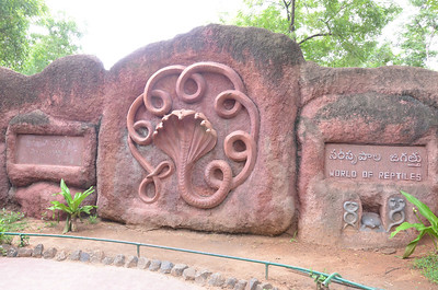 Nehru Zoological Park - Hyderabad Zoo, Hyderabad