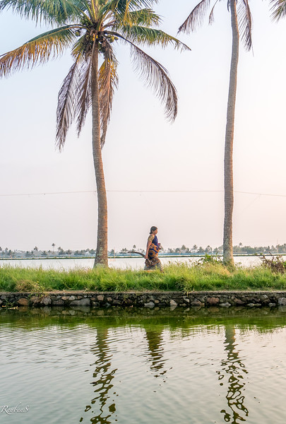 Lady, Backwaters of Kodamthuruth