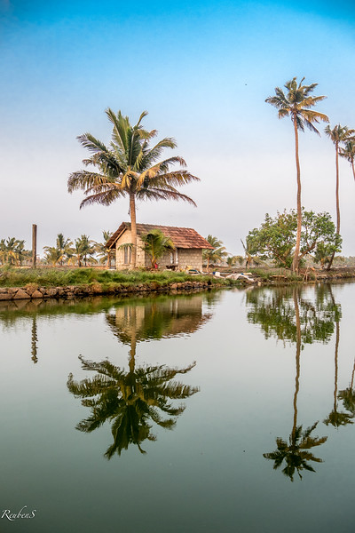 Along the backwater canals
