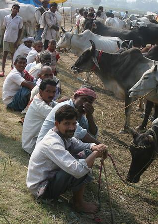 Bihar ANIMAL FAIR 37