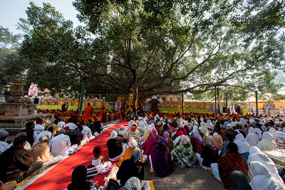 Under the precious Sacred Bodhi Tree duing the 10th annual Tipitaka Chanting Ceremony in Bodhgaya, Bihar, India.