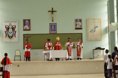 Palm Sunday 2011 - Catholic Church Chandigarh