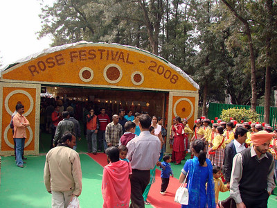 Chandigarh Rose festival - The biggest Rose Show in the India