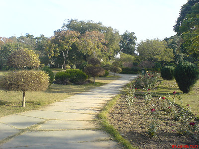 Hibiscus Garden Chandigarh