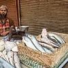 Fishmonger, Delhi