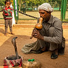 Snake charmer and spitting cobra, Delhi