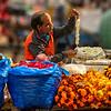 Marigold merchant, Delhi
