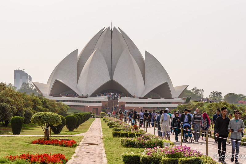 Moment of Silence at the Lotus Temple